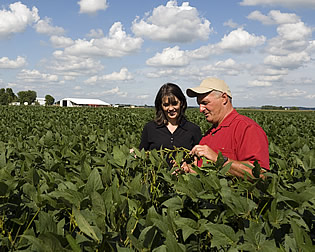 A photo of a Bunge employee wuth a farmer in a corn field.